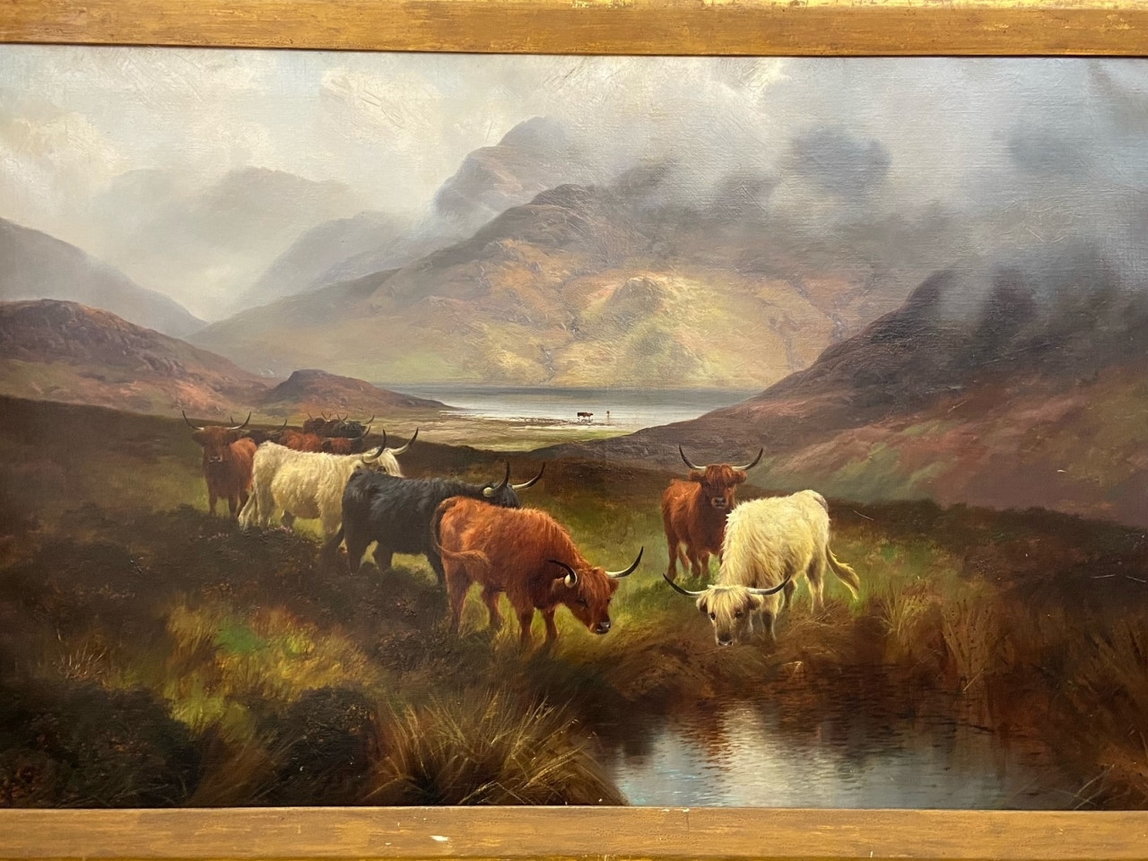 Dipinto di bestiame dell'altopiano firmato Hall - Antichità Ioviero